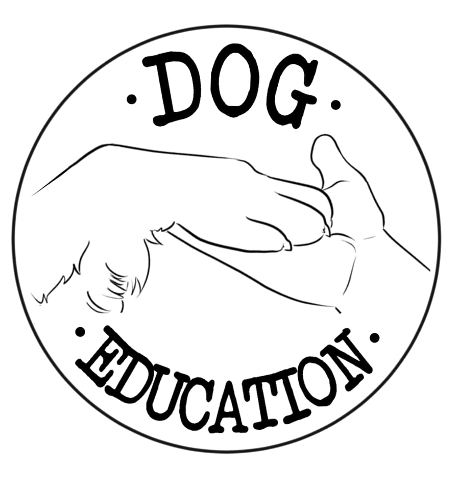 Dog Education Saumur